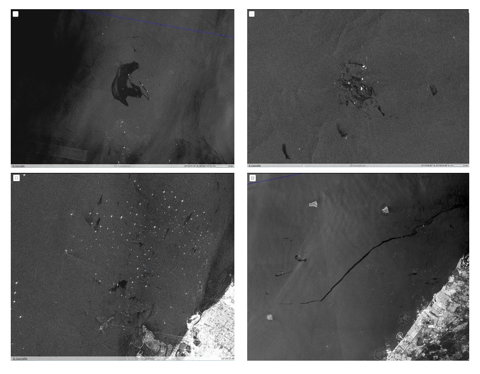 Examples of typical oil spills detected on Sentinel-1 SAR images